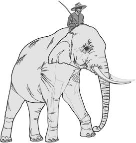 The Elephant Rider